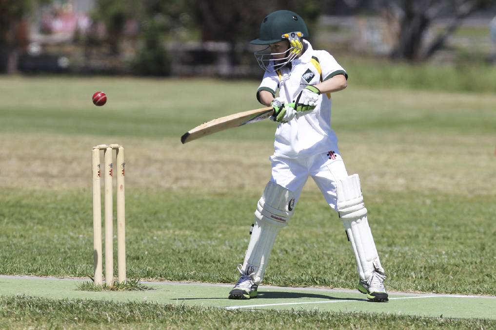 2021 junior cricket